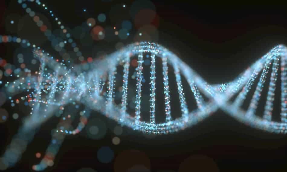 Is asmr genetic?